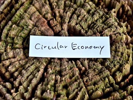 Squarcular economics - overcoming external barriers when implementing circular economy