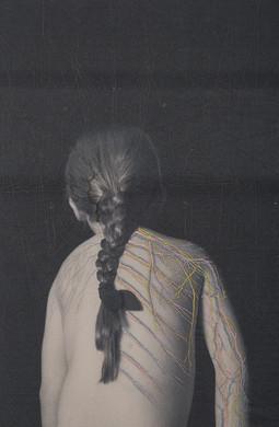 Juana Gomez-Distaff. 04 (nervous system)