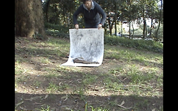 2011- Parque de S. Roque Drawings