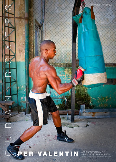 Poster - Cuban Boxers