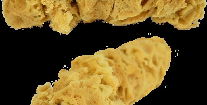 Sea Sponge Roller
