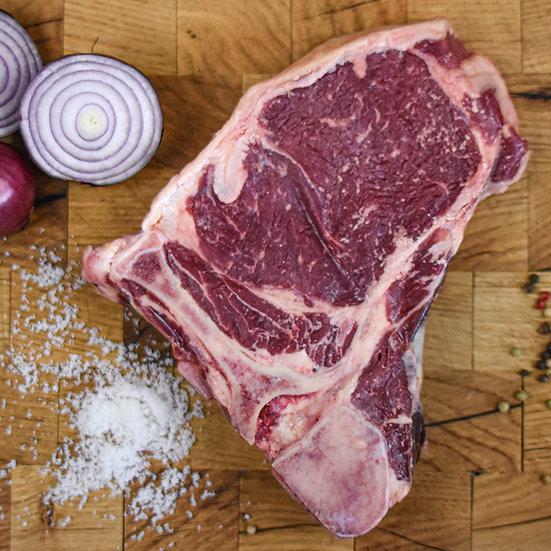T-Bone Steak vom Highland Cattle
