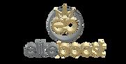 eliteboost_logo_transparent_ohne.png