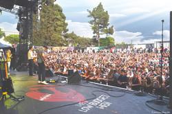 LBM Nice Music Live Selah Sue 2015