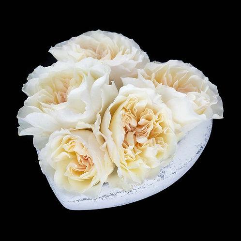 Aranjament - trandafiri David Austin Eugenie