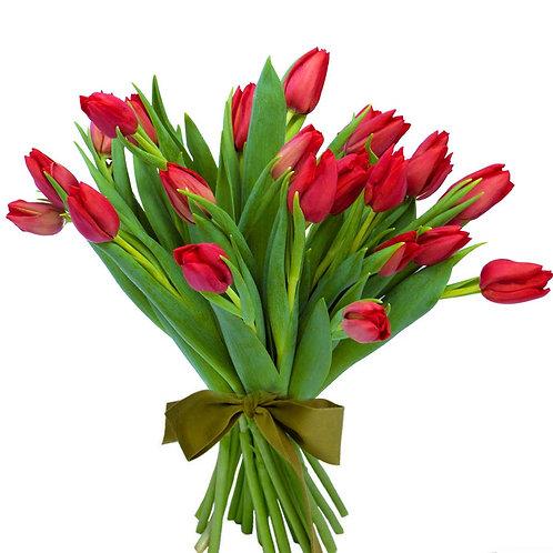 Buchet flori - Lalele rosii 25 fire