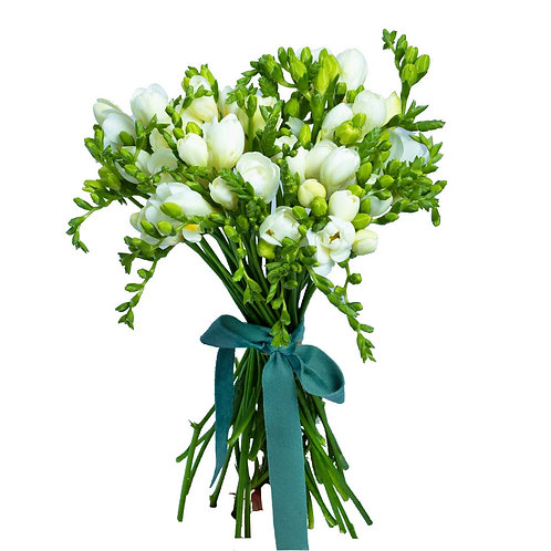 Buchete flori - Buchet frezii albe 25 fire