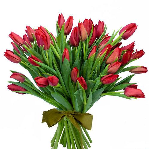 Buchet flori - Lalele rosii 49 fire