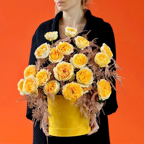 Cutie cu trandafiri - Beatrice David Austin