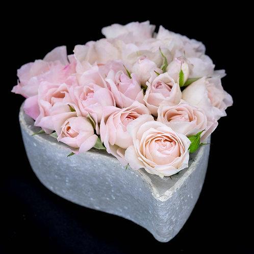 Aranjament trandafiri - English Miss in vas de piatra
