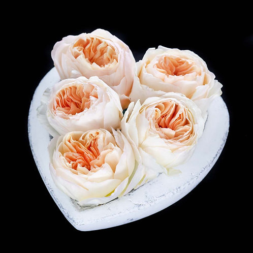 Aranjament - trandafiri David Austin Juliet