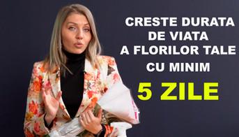Creste durata de viata a florilor cu 5 z