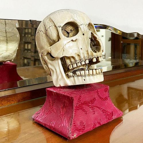 Cráneo Antiguo Labrado en Marfil con Logo Masón
