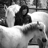 Alison McCabe is a registered psychotherapist. She holds a Masters Degree from Prescott College and is a certified Gestalt Equine Psychotherapist. She offeres equine assisted therapy to individuals, couples and families.