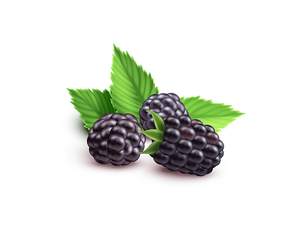 blackberry1_edited.png