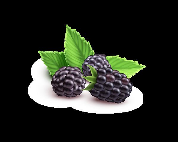 blackberry1_edited.png