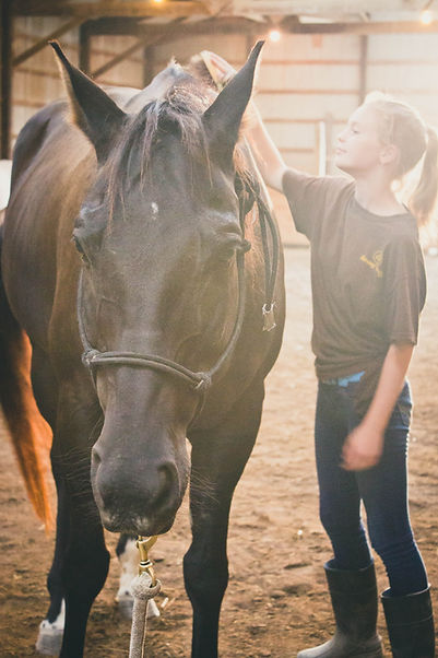 Pictured here is a female teen from our LGBTQ+ equine therapy group.
