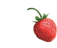 single strawberry_small_edited.png