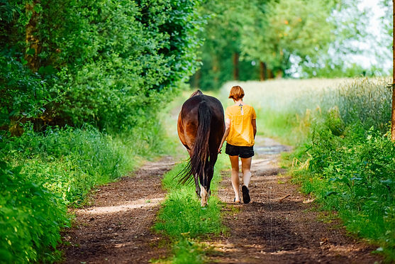 A teen walking with their therapy horse in our Exploring Gender Identity support group focused on teens questioning their gender identity.