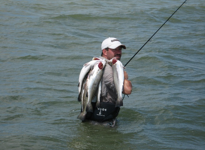 wade-fishing-speckled-trout.jpg