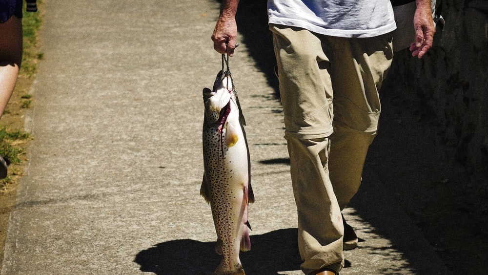 A man walking with a huge speckled trout in his hand.