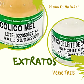 EXTRATO GLIC VEGETAL.png