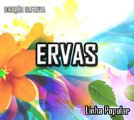 ERVAS