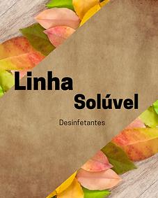 SOLÚVEL.png