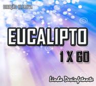 eucalipto 1x60