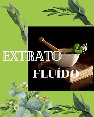 EXTRATO FLUIDO.png