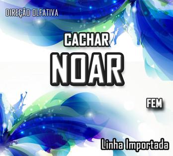 CACHARREL NOAR FEM