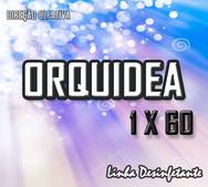 orquidea 1x60
