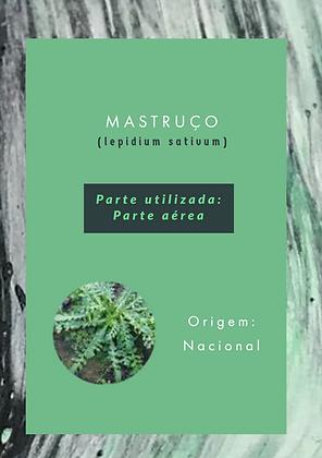 EXT FLUIDO MASTRUCO - LT