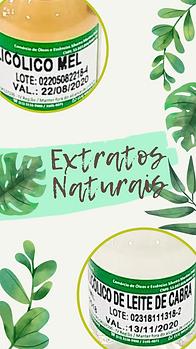 extratos vegetais..png
