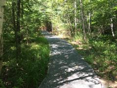 ADA Woodland Trail to the Pond