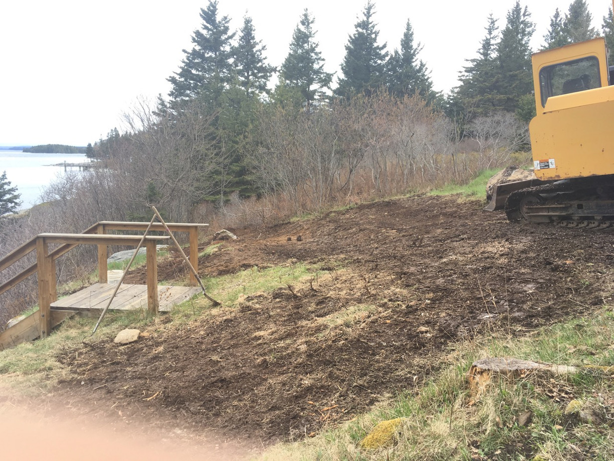 To divert surface water away from the bluff, we re-shaped the ground into gentle swales leading to existing, heavily vegetated depressions or to areas that we shaped and vegetated with wetland plants.