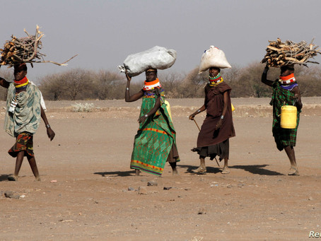 Rights groups urge Kenya to reconsider closing refugee camps