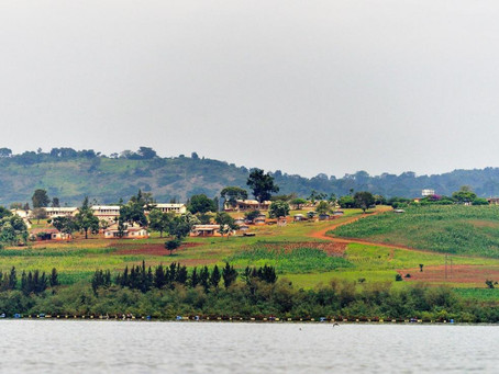 Uganda arrests NGO worker after Total's Tilenga investigation