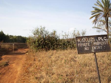 Kenya's Kakuzi avocado farm linked to 'abuse' abandons lawsuit