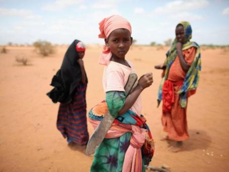 'No other home': Refugees in Kenya camps devastated over closure
