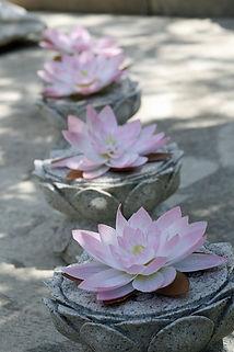 lotus-2472396_1920.jpg