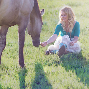 012 - 01 - horse-937767_1920.jpg