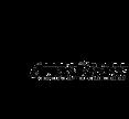 N_ABC Logo 2020.png