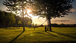 Mill Farm Meadow