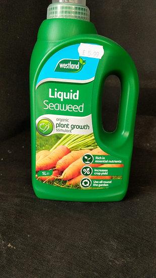 Westland Seaweed Liquid Feed
