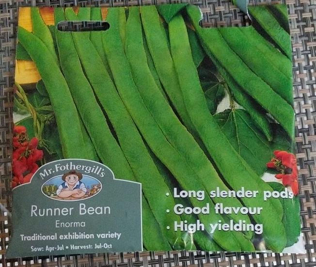 Runner Bean