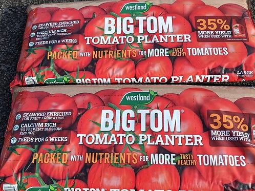 tomato planter x 2