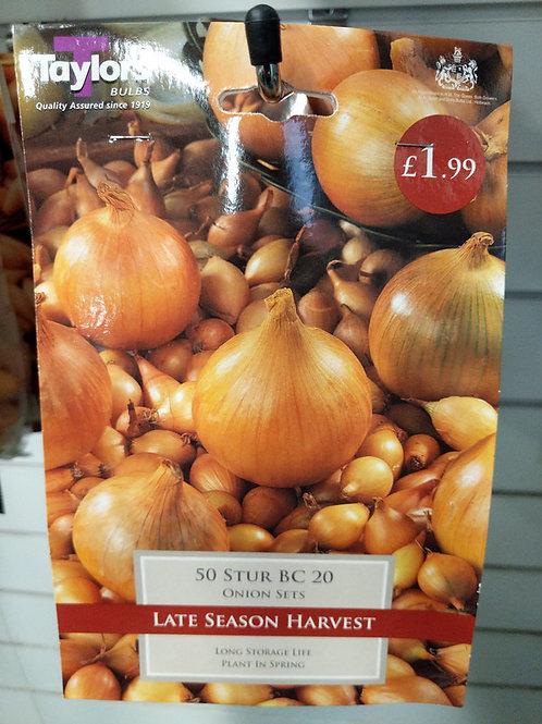 Stur Onions