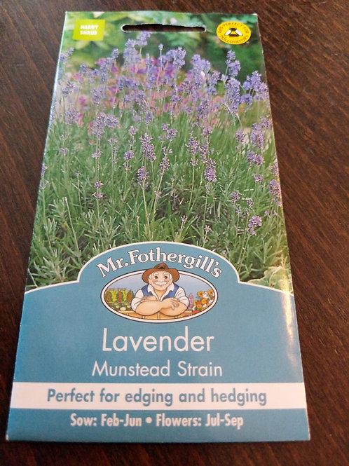 Lavender Mustead Strain