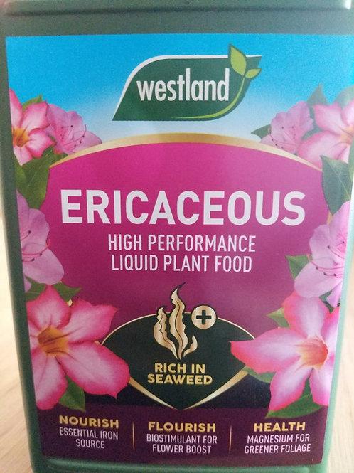 Westland Ericaceous